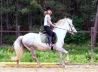 Idée de Sortie Ginestet Ferme Equestre de Gueyte