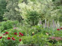Idée de Sortie Neuvic Parc Botanique du Château de Neuvic