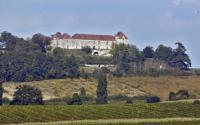 Idée de Sortie Thénac Château de Théobon