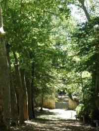 Parc du Moulin des Tours Port Sainte Marie