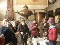 Idée de Sortie Les Essards Musée du Cognac et du vin