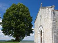 Idée de Sortie Sencenac Puy de Fourches Eglise Saint-Mandé-et-Notre-Dame
