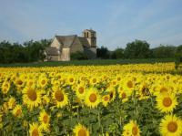 Idée de Sortie Vézac Village de Vézac