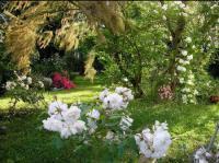 Au Jardin de Montfleuri Lot et Garonne