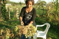 Idée de Sortie Cause de Clérans Jardin camerounais du Périgord