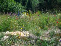 Jardin du naturaliste Lachapelle aux Pots