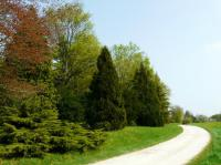 Idée de Sortie Saint Léger sous Brienne Arboretum de Brienne-le-Château