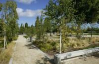 Parc de Songis Aube