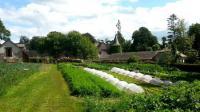 Idée de Sortie Trémouilles Le Jardin de Veillac - Légumes de la ferme