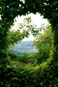 Idée de Sortie Montsalès Le Jardin de la Mothe