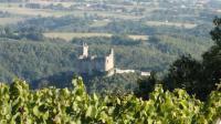 Idée de Sortie Vailhourles Pierre Tournier - Domaine des Vignes Grandes