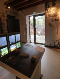 Idée de Sortie Pruines Espace des Enfarinés - Collection de minéraux et de fossiles