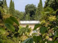 LE JARDIN DES PLANTES Montpellier