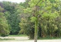 Idée de Sortie Carnoux en Provence Parc Jean Moulin