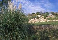 Idée de Sortie Carnoux en Provence Jardin Palissy