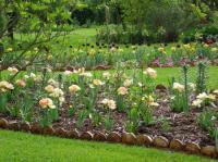 Idée de Sortie Arpheuilles Le Jardin d'Elisée