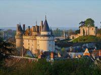Idée de Sortie Langeais Château et parc de Langeais