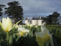 Idée de Sortie Vallières les Grandes Domaine de Chaumont-sur-Loire