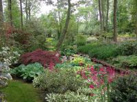 Jardin Arboretum d´Ilex Loiret
