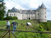 Idée de Sortie Mareuil sur Arnon Château de Châteauneuf-sur-Cher