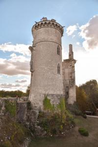 Idée de Sortie Allogny Château Charles VII