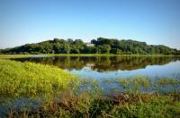 Idée de Sortie Labenne Réserve Naturelle du Marais d'Orx