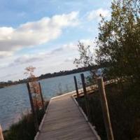 Idée de Sortie Arengosse Lac d'Arjuzanx