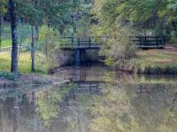Idée de Sortie Saint Seurin sur l'Isle Forêt de la Double