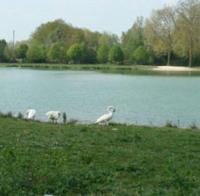 Idée de Sortie Anglure Gravière du Parc de la Béchère