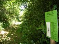 Idée de Sortie Trémouilles Sentier botanique d'Arvieu