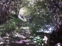Idée de Sortie Vézins de Lévézou Sentier botanique