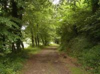 Idée de Sortie Morbihan Forêt du Hingair