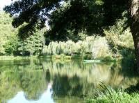 Idée de Sortie Saint Avit Plan d'eau Chapoton
