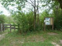 Idée de Sortie Santranges Site naturel préservé de l'Île à Gaston