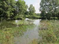Idée de Sortie Mézières en Brenne Les prés du canal