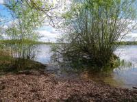 Idée de Sortie Argent sur Sauldre Parc Naturel Départemental - L'étang du puits