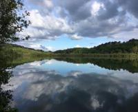 Idée de Sortie Arbonne Lac Mouriscot