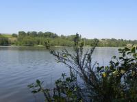Idée de Sortie Aire sur l'Adour Lac et réserve ornithologique du Broussau