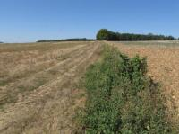 Idée de Sortie Champagne et Fontaine Plaines agricoles du Verteillacois