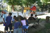Idée de Sortie Saint Sever Jeux pour enfants à Morlanne