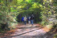 Idée de Sortie Hagetmau Marche les Trotte Sentiers de Chalosse