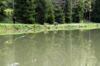 Idée de Sortie Louvie Juzon Lac Ducrest