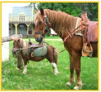 Idée de Sortie Champagnac de Belair West Wood Ranch
