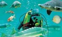 Idée de Sortie Campagne Aquarium du Périgord Noir