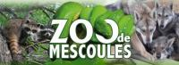 Idée de Sortie Sainte Innocence Zoo de Mescoules