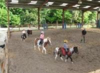 Idée de Sortie Saint Agne Centre Equestre et Poney Club La Métairie du Roc