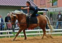 Idée de Sortie Marolles lès Bailly Centre equestre Chant'équi