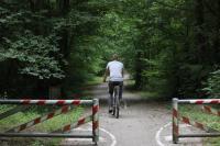 Idée de Sortie Géraudot Location vélo - Forest Game
