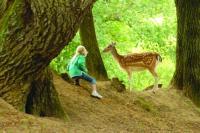 Idée de Sortie Finistère Parc du Quinquis