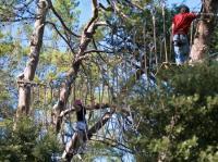Idée de Sortie Mas des Cours O2 AVENTURE - PARCOURS ACROBATIQUE FORESTIER